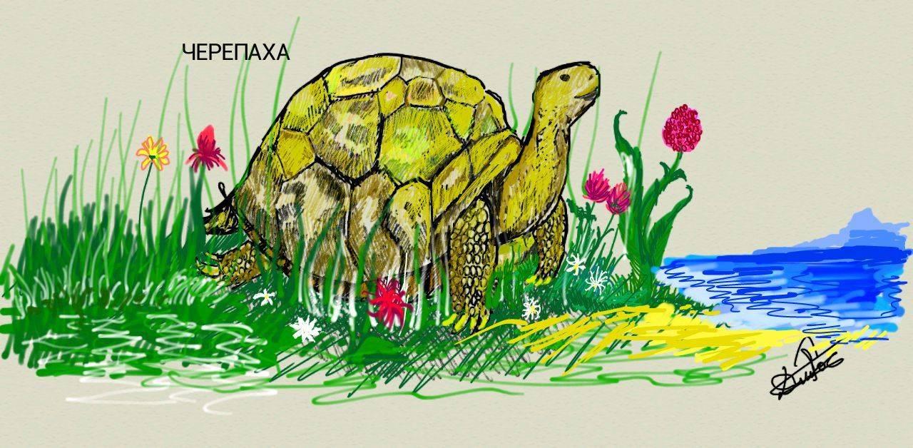 иллюстрации к детским рассказам
