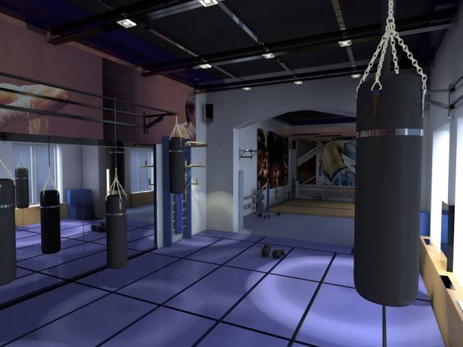 Спортивный зал боевых искусств