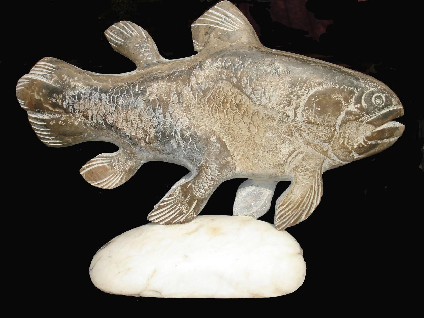 Рыба-ягуар