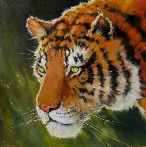 40х40 Тигр