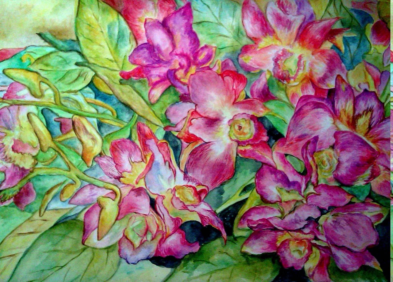 Орхидеи, акварель, бумага, 25*37, 2014 г