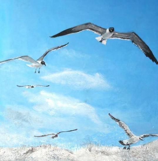 Чайки.  Mouettes. Gulls