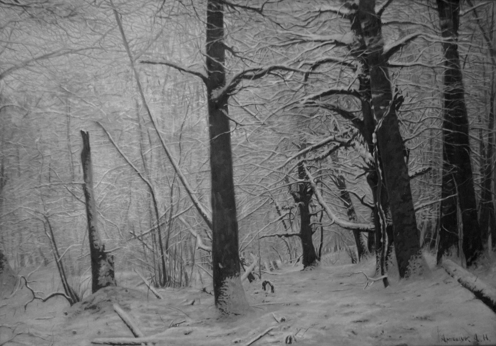 Мезмайский лес зимой