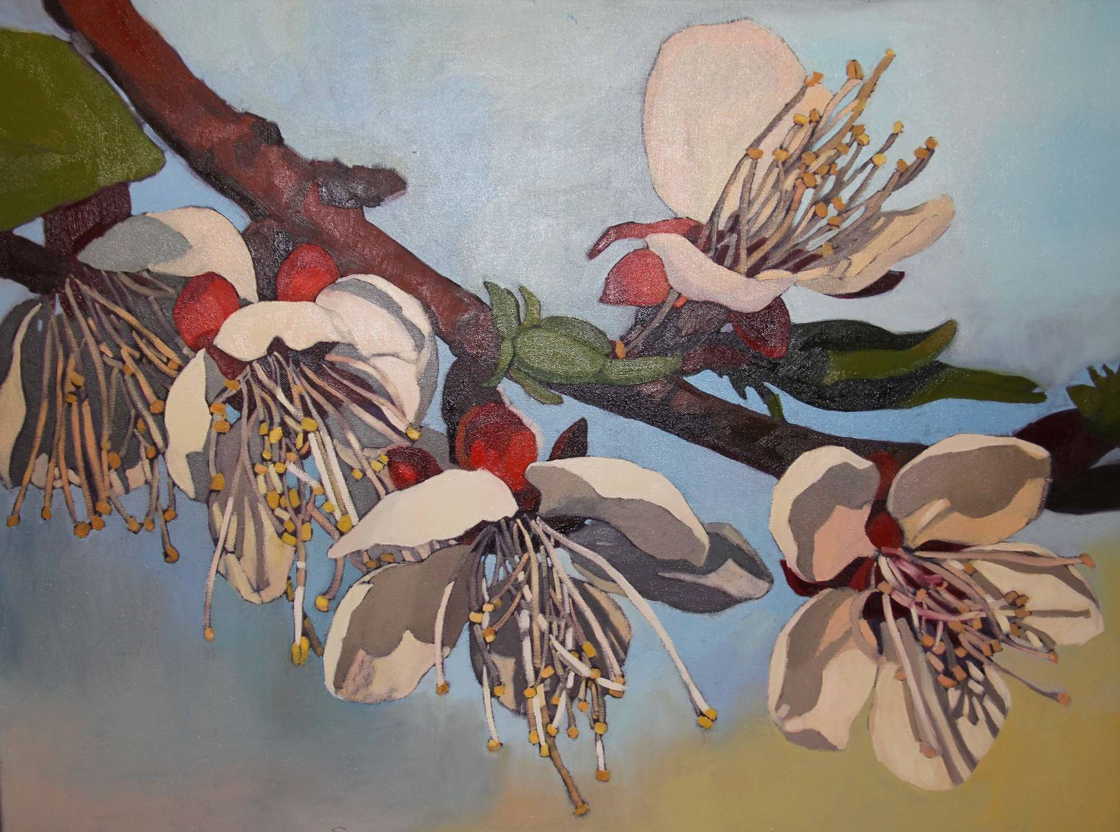 Ветви в цвету, 60х80см., холст, масло, 2014