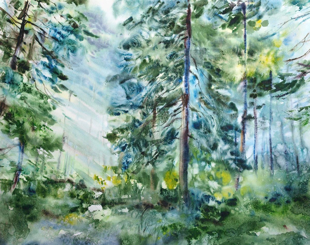 Солнце в летнем лесу.  Бумага, акварель,52х63