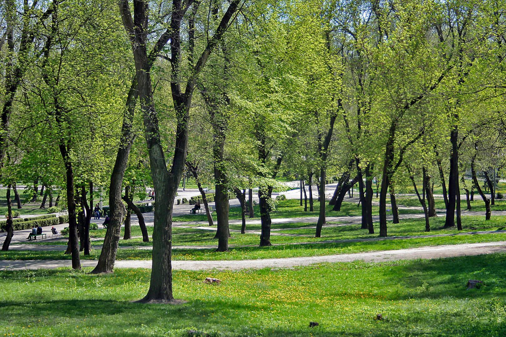 Парк города Бельцы