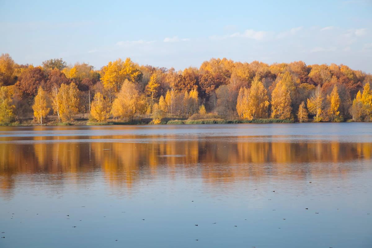 Осеннее утро на озере.