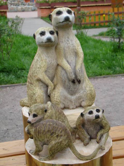Семья сурикатов, 47 см.