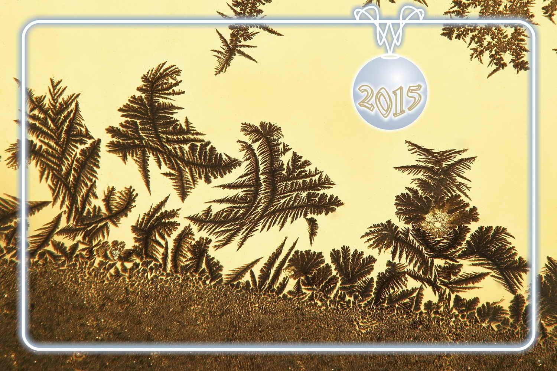 2015 001 Неземная растительность