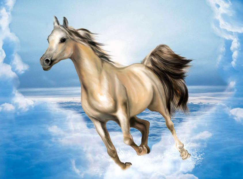 в год Лошади