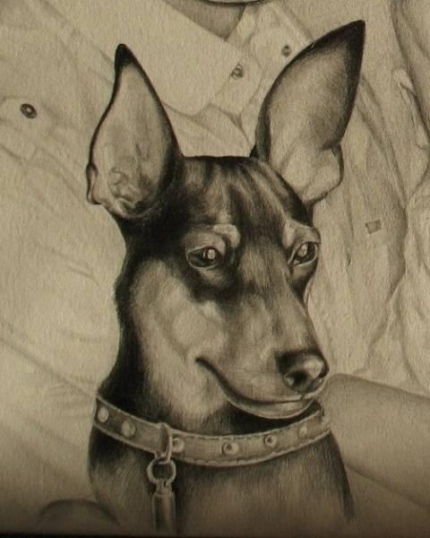 Графика (портреты людей и животных)