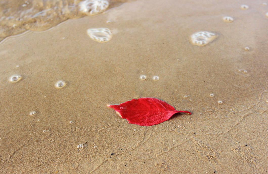 Уж море осенью дышало......