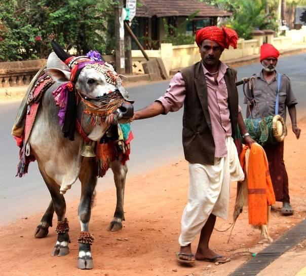 Это Индия - рынок и немного пляжной композиции.