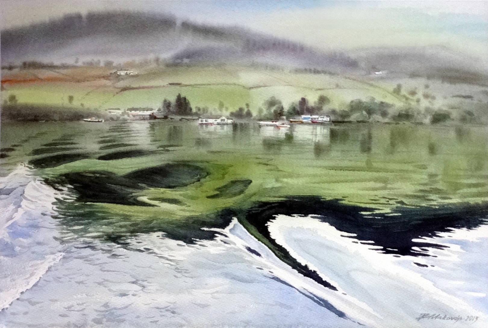 ,,Заплыв по озеру.Ирландия,,бум.Saunders 425 гр.38*57 см.