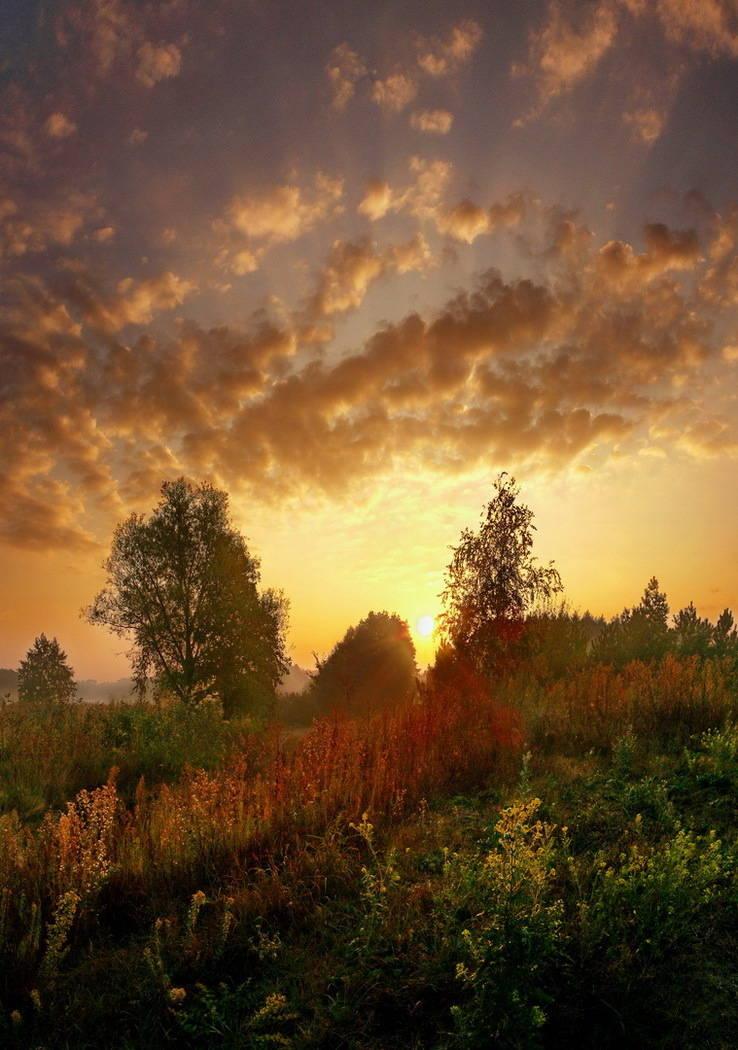 """""""В лучах осеннего солнца"""""""