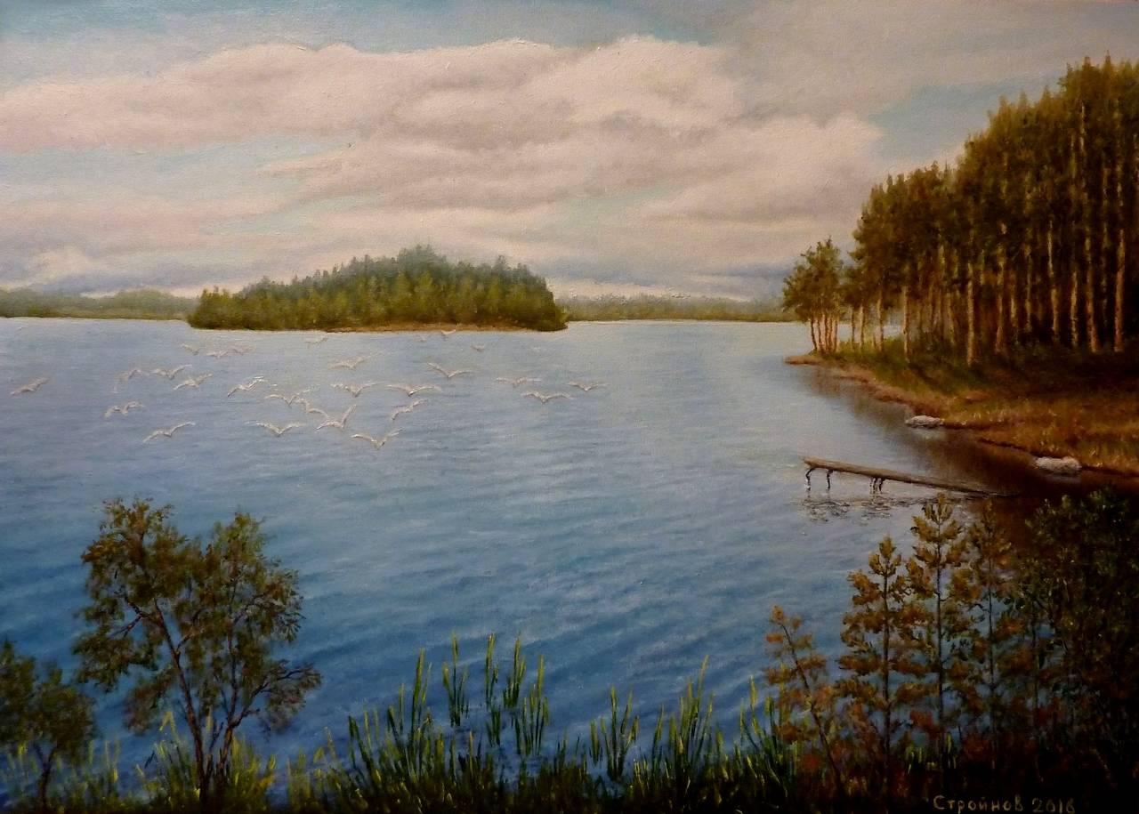 """ Чайки над озером.""  холст, масло 50х70 см."