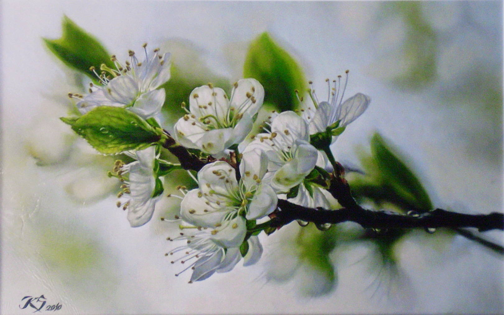 Яблоневый цвет кожа, масло, 25х32